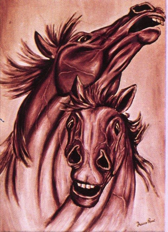 Cavalli rosa