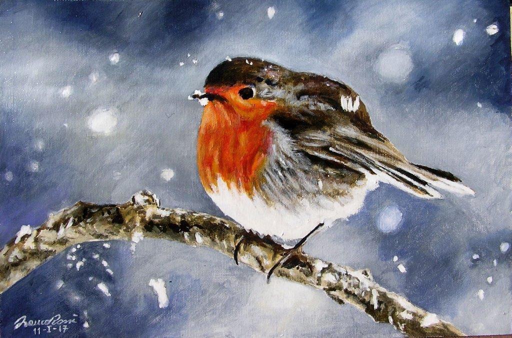 Pettirosso nella neve