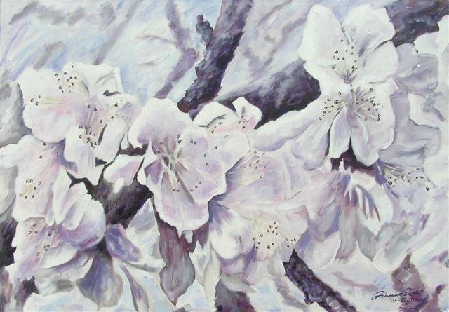 ..perché i ciliegi tornassero in fiore